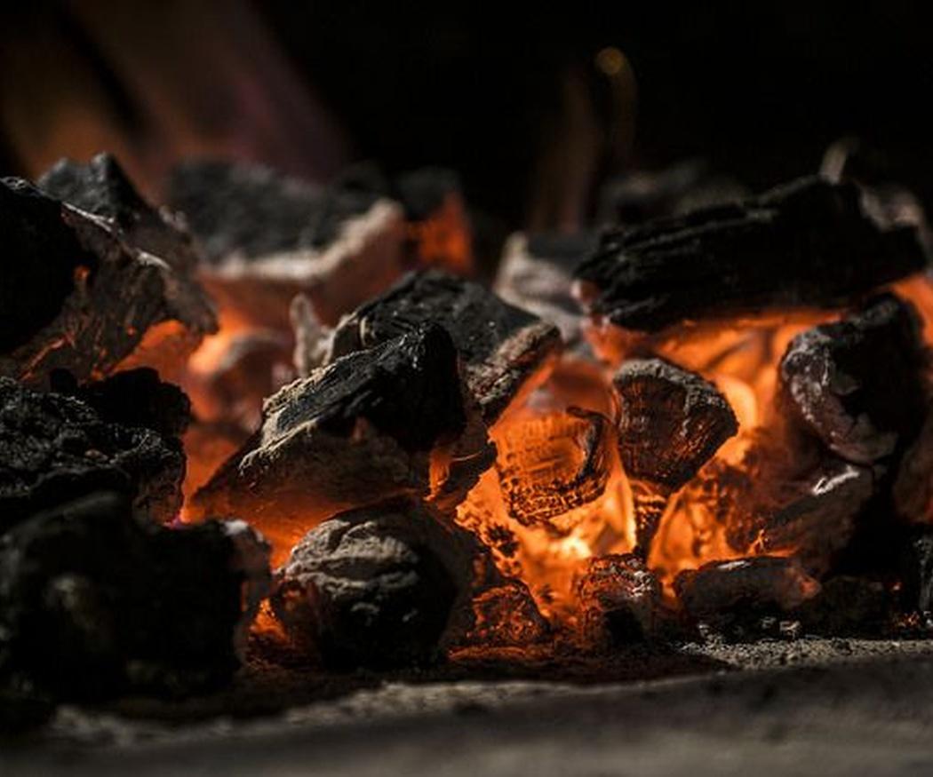 Diferencias entre el carbón vegetal y el carbón mineral
