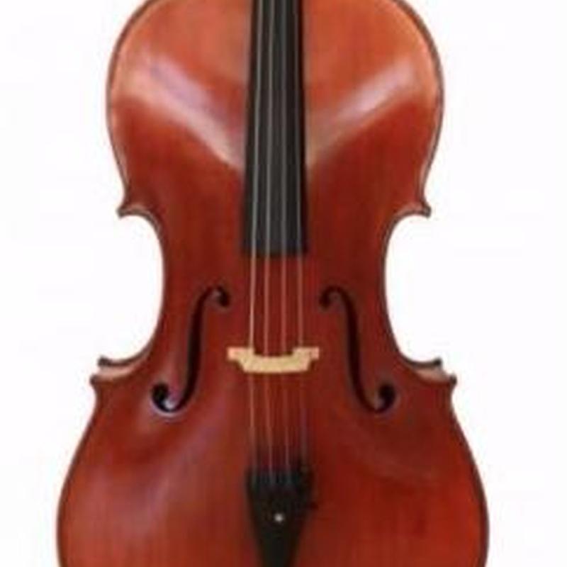 CELLO F.MÜLLER CONCERTINO 4/4 7/8 3/4 sólo instrumento: Catálogo de L'Art Guinardó