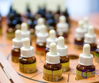 SEMINARIO: Inmunización natural.  Micro- Inmunoterapia. Homeoprofilaxis: Consultas Actividades y Cursos de Fortalecimiento Vital