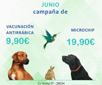 CAMPAÑA ANTIRRÁBICA 2019
