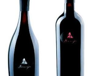 Distribuidores de vinos Beasain en Guipúzcoa