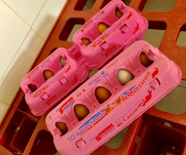 Granja de huevos en Lanzarote | Avícola Sánchez