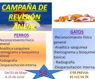 CAMPAÑA DE REVISIÓN GENERAL ANUAL