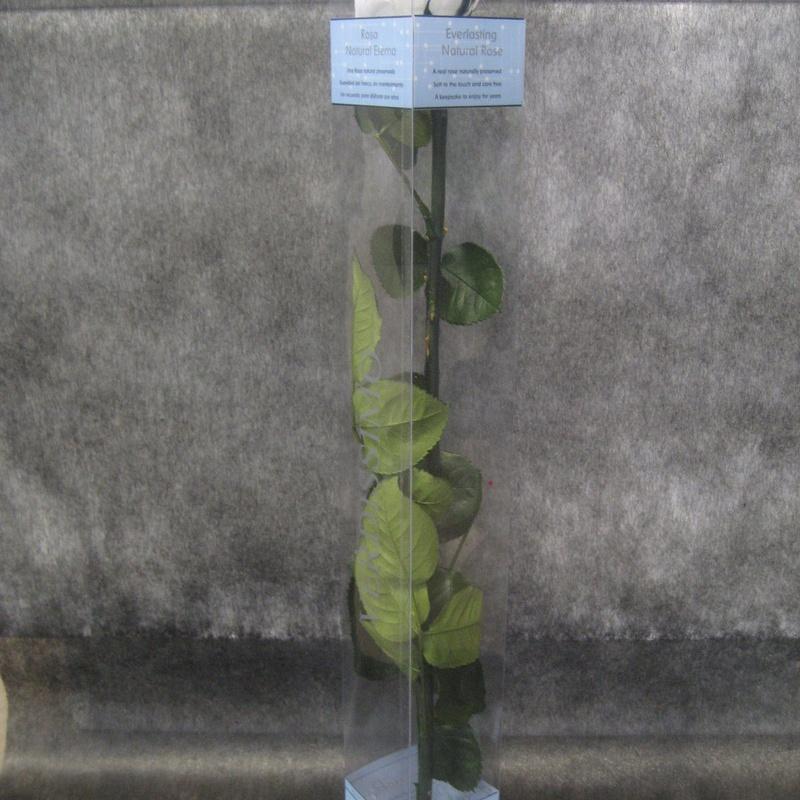 Rosa Preservada Blanca: Nuestras flores de Bouquet Flores y Plantas