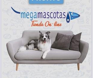 Próxima tienda online. Megamascotas Más que nunca