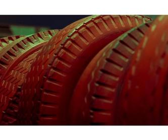 Mecánica rápida : Servicios  de Talleres Roal