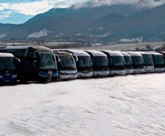 Flota de vehículos