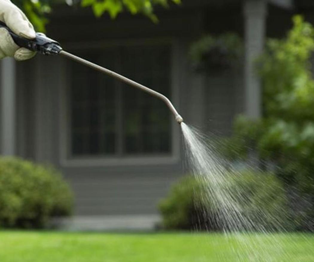Evitar el mantenimiento de tu jardín