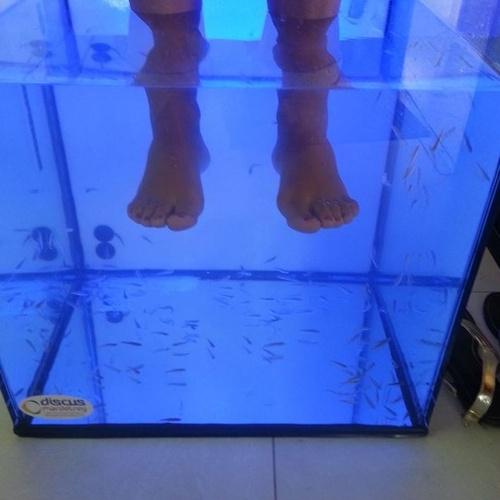 Peeling natural en los pies con peces