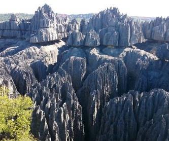Madagascar clásico: Servicios de Viajes a Madagascar