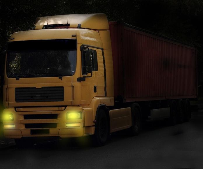 Cabezas tractoras: Vehículos industriales de Emirtrucks Trading