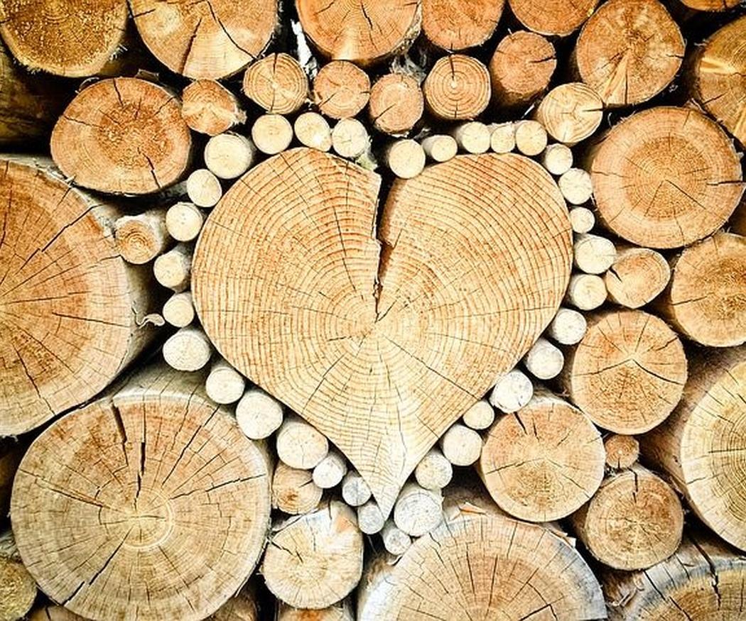 Propiedades excepcionales de la madera para construcción