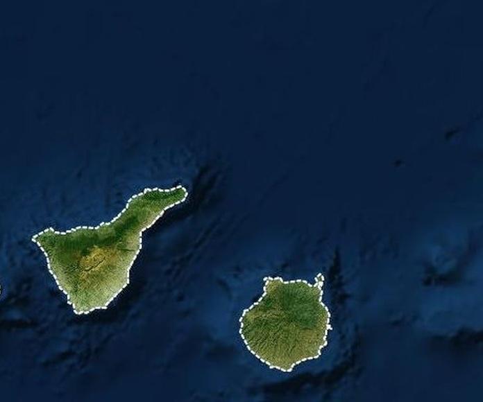 Verificación Surtidores en Canarias: ¿Qué ofrecemos? de Tacsa Verificaciones