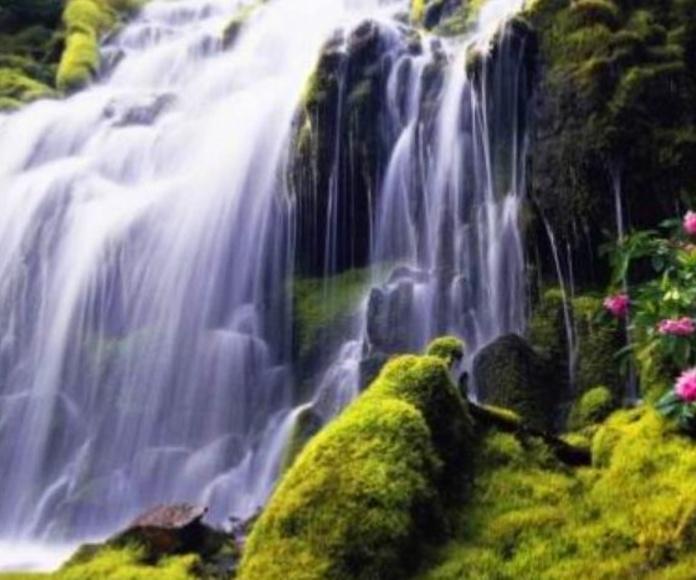 El altar del agua