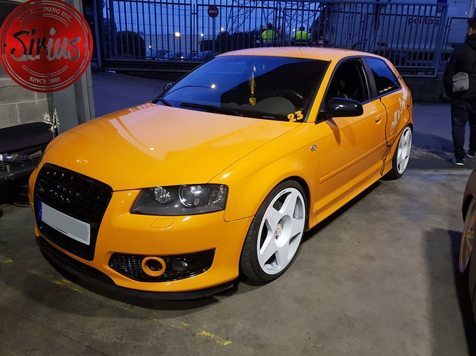 Audi S3 - Copelas Regulables