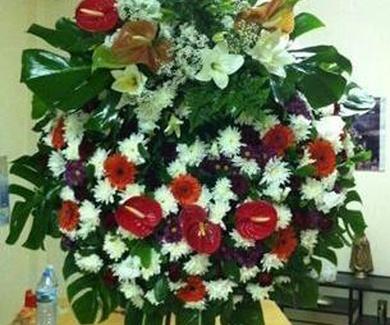 Servicios de floristería en Tenerife norte