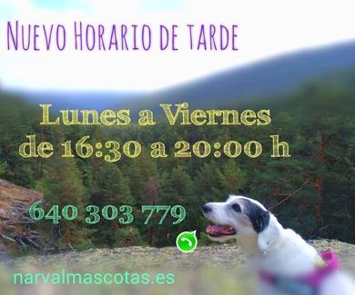 CAMBIO HORARIO DE TARDE Narval Mascotas | Septiembre 18