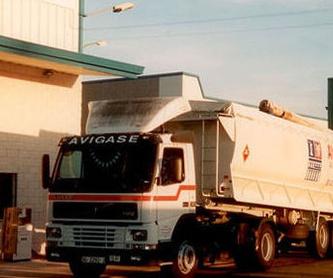 Transporte a granel: Servicios de Transportes Fernández Borregón, S.A.
