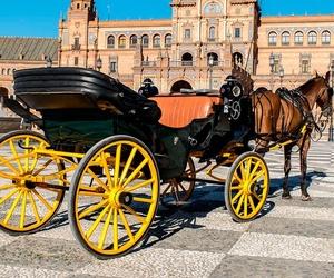 Paseos en coche de caballos en Sevilla