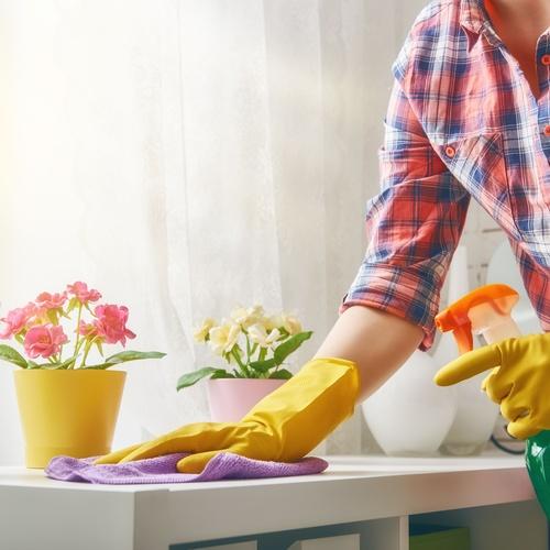 La limpieza óptima de tu hogar