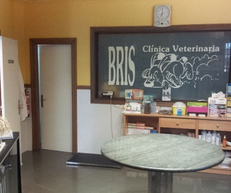 Mouth cleaning and dental extractions: Services de Bris Clínica Veterinaria