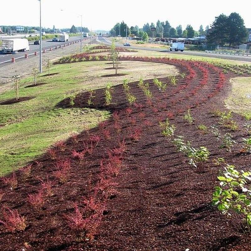 Paisajismo: Productos y servicios de Marga Garden