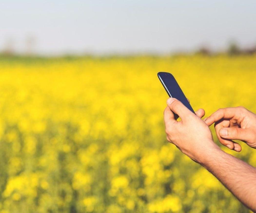 Controla el toldo de tu casa desde tu teléfono