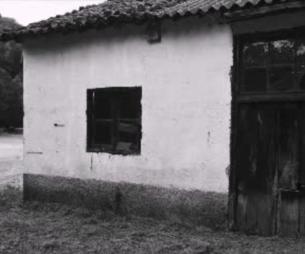 Maderas de Castaño