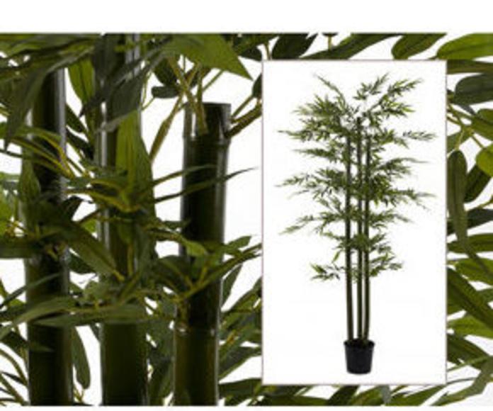 Árbol bambú dirt 180cm
