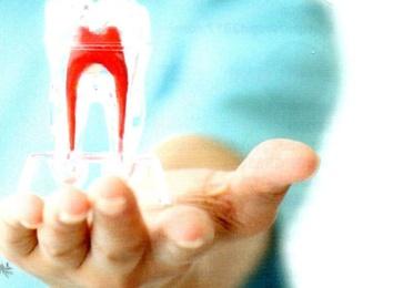 ¿En manos de quién pondrías tu salud bucal?