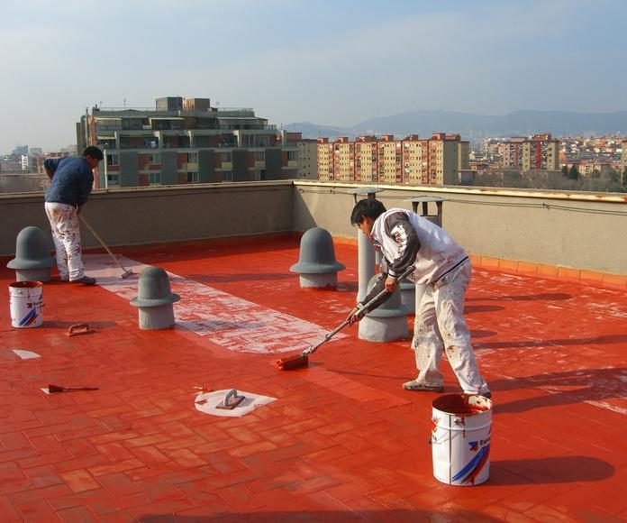 Impermeabilizaciones: Servicios de Pintors Martínez