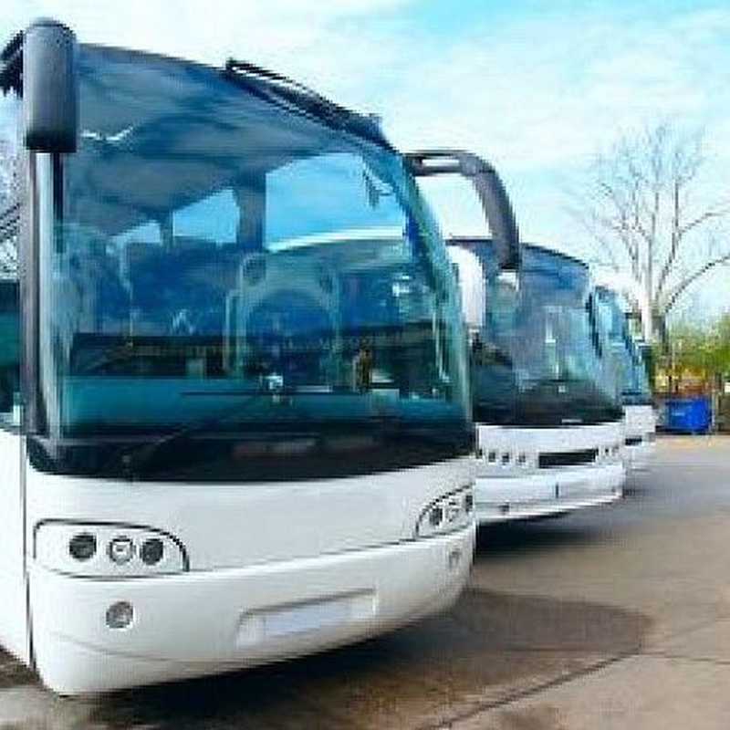 Transporte escolar: Servicios de Autobusa Mikrobusa