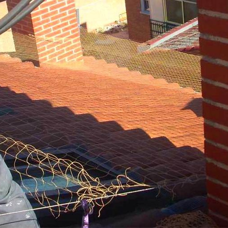 Instalación de red o pinchos antiaves en tejado, cubierta o alero.