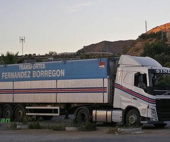Cubas de piensos: Servicios de Transportes Fernández Borregón, S.A.