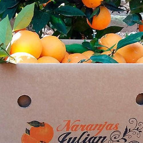 comprar naranjas valencianas por internet