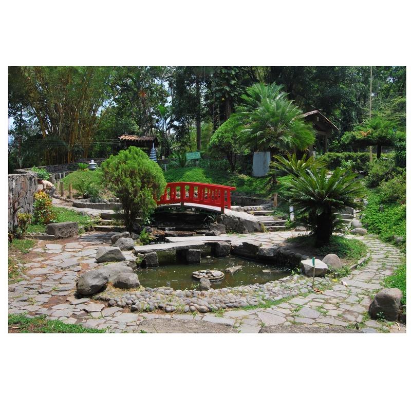 Jardín japones: Servicios de Sebastián Martínez Cosín