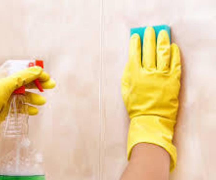 Elejir un buen producto para retirar el moho producido por la humedad.
