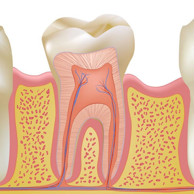 Endodoncia: Servicios de MAG Clínica Estético Dental