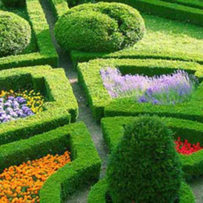 Claves para diseñar un jardín (2)