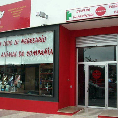 Veterinarios en Benicasim | Mundo Mascota