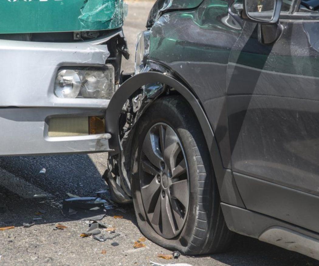 ¿Responde el seguro tras un accidente de tráfico provocado por mi perro?
