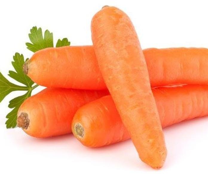 Distribución internacional: Servicios de Zanahorias Doña Pepa