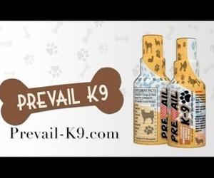 PREVAIL K-9