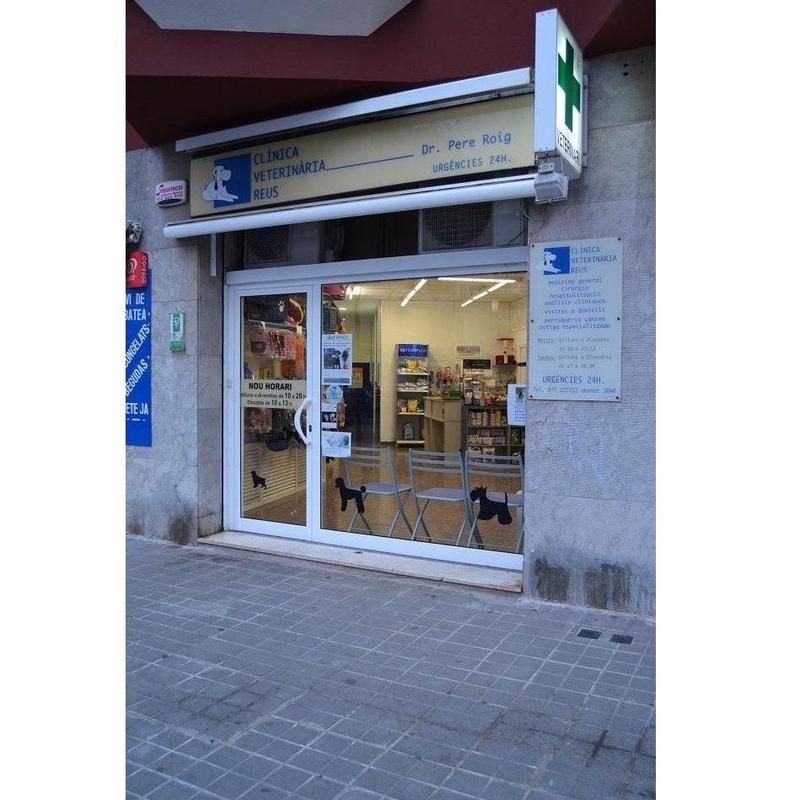Medicina interna: Especialidades de Clínica Veterinaria Reus