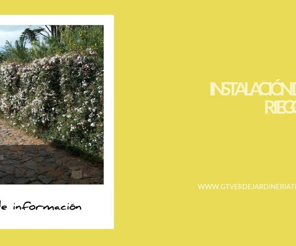 Mantenimiento de jardines Tenerife | GT Verde