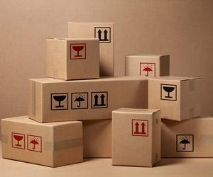 Cajas de cartón y estuches