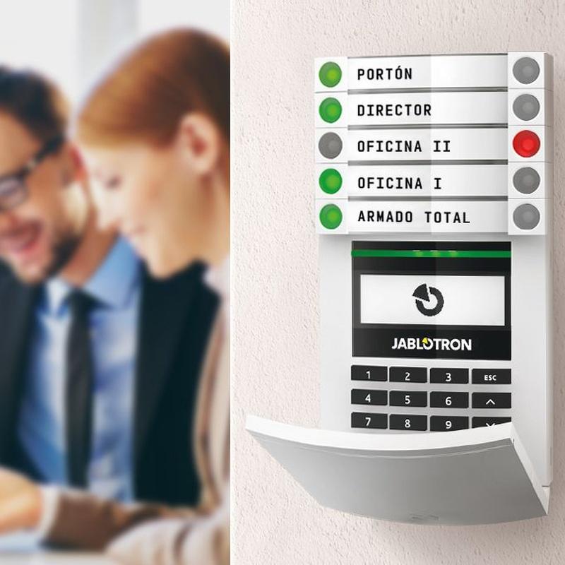 Alarmas para empresas: Productos de Vian Segur