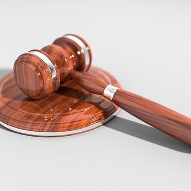 Importancia del Derecho