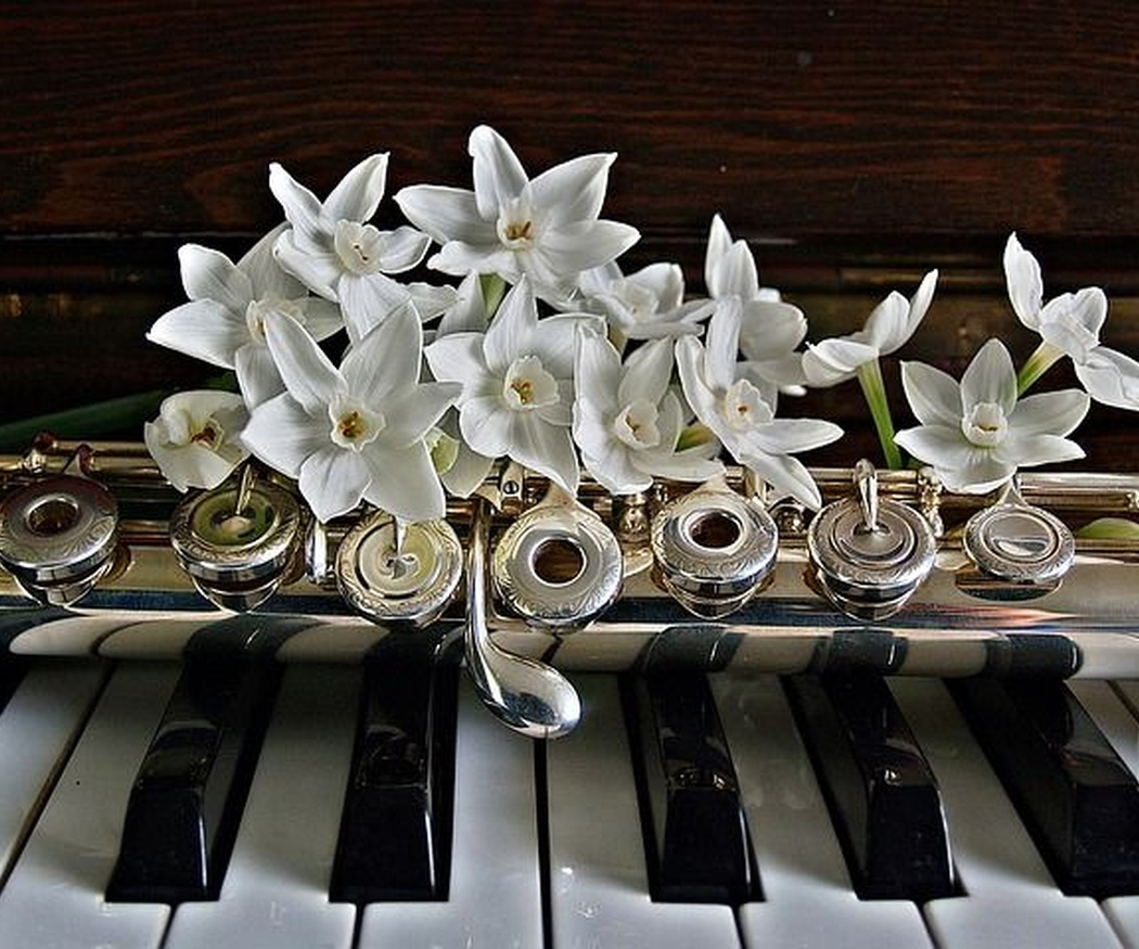 Partes y estructura de un piano