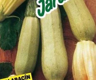 1-ACELGA  : Productos de Danimayos Crea Tu Jardin